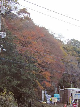 逢坂山の紅葉2005(4)