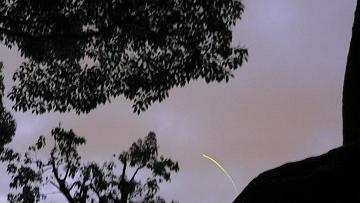 藤森神社の蛍