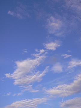 立秋の空の画像