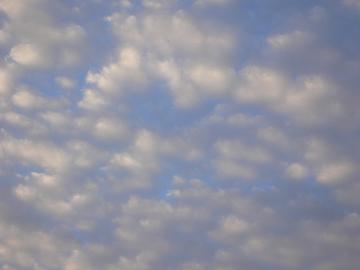 ぼんやり浮かぶひつじ雲の画像