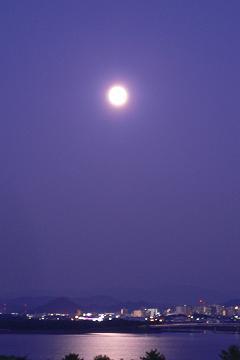 仲秋の名月の写真