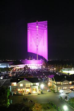 ピンクリボンな大津プリンスホテルの写真