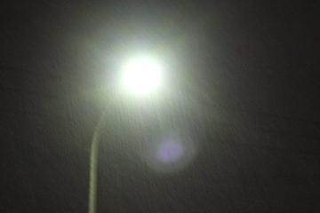 雪が降るの写真