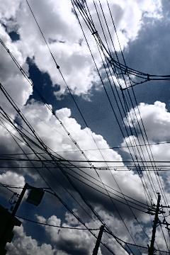 晴れた日は空を見上げて(4)の写真