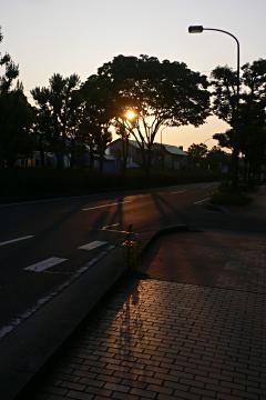 晴れた日は空を見上げて(7)の写真