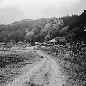 山里の風景(6×6)の写真
