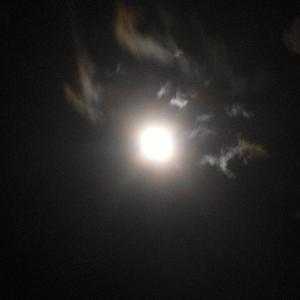 """月夜の写真"""""""