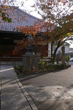 """墨染寺の櫻の写真"""""""