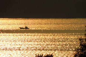 湖面の輝きの写真