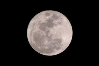 今年最初の満月の写真