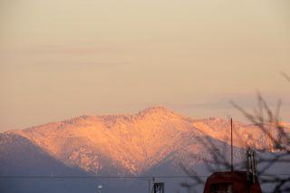 愛宕山の写真