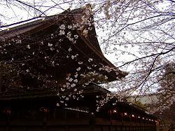 藤森神社(3)