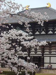 東大寺(2)