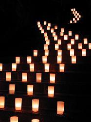 燈花(1)