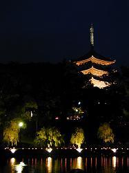燈花(2)